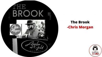 the brook by chris morgan